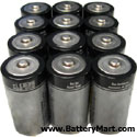 C+Alkaline+Batteries+-+12+Pack