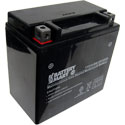 YTX14-BS AGM Maintenance Free Battery