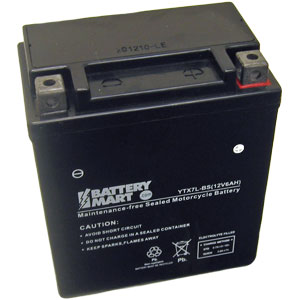 YTX7L-BS AGM Maintenance Free Battery