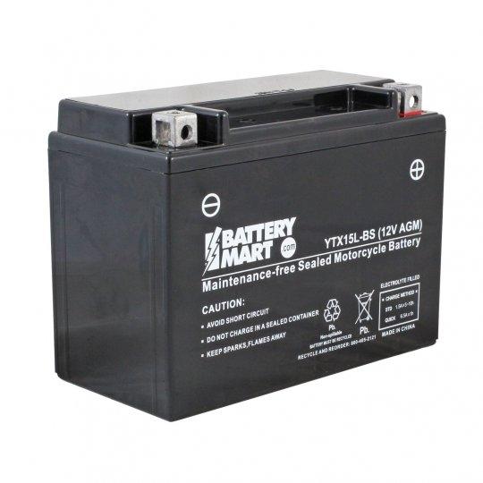 YTX15L BS AGM Maintenance Free Battery